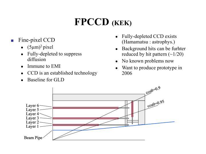 FPCCD