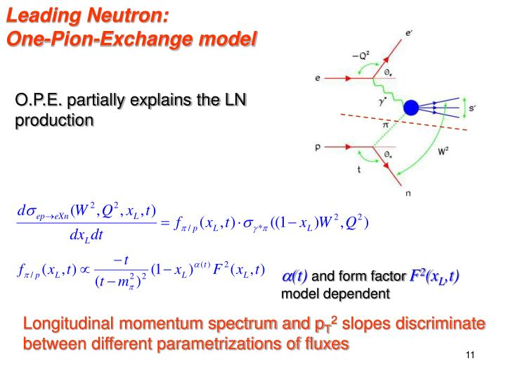 Leading Neutron: