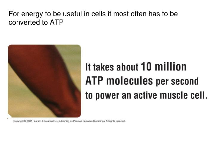 For energy to be useful in cells it most often has to be converted to ATP