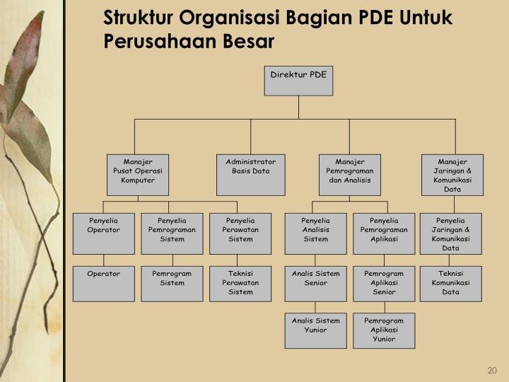 Struktur Organisasi Bagian PDE Untuk Perusahaan Besar
