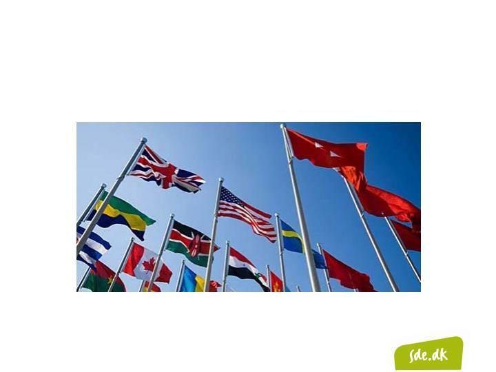 Har I behov for internationale  kompetencer?