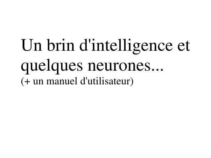 Un brin d'intelligence et quelques neurones...