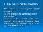 future work and the challenge