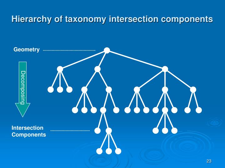 Hierarchy of taxonomy intersection components