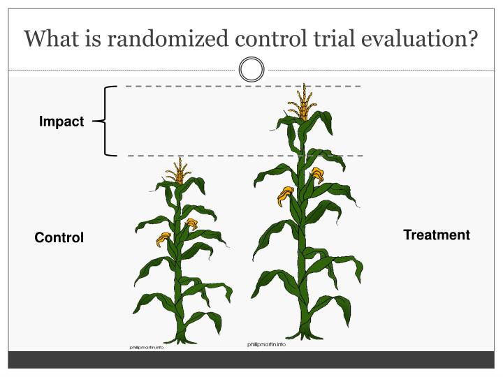 What is randomized control trial evaluation?