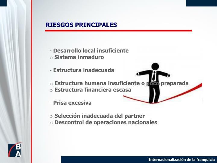 RIESGOS PRINCIPALES