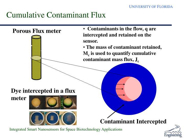 Cumulative Contaminant Flux
