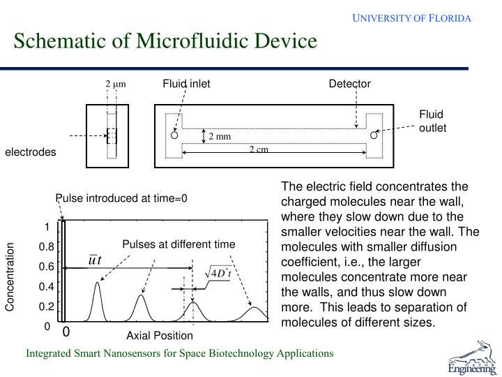 Schematic of Microfluidic Device