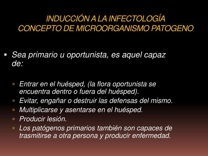 INDUCCIÓN A LA INFECTOLOGÍA
