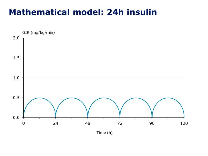 Mathematical model: 24h insulin
