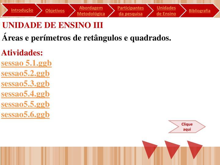 UNIDADE DE ENSINO III