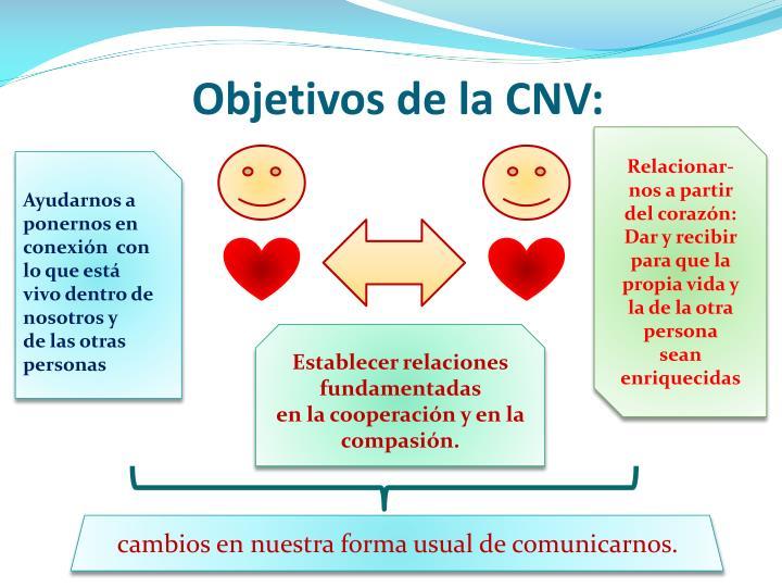 Objetivos de la CNV: