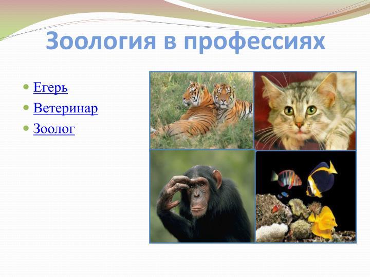 Зоология в профессиях
