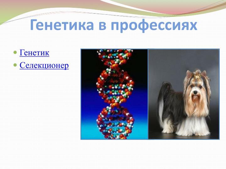 Генетика в профессиях