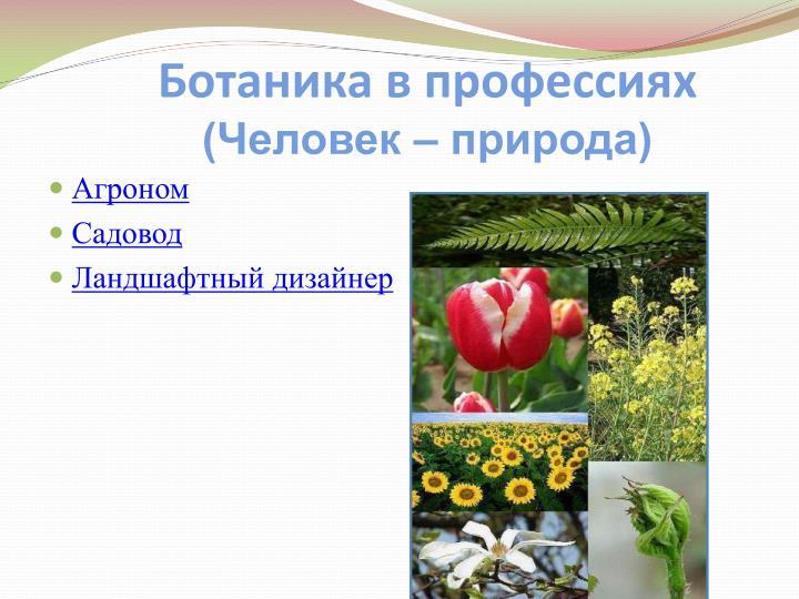 Ботаника в профессиях