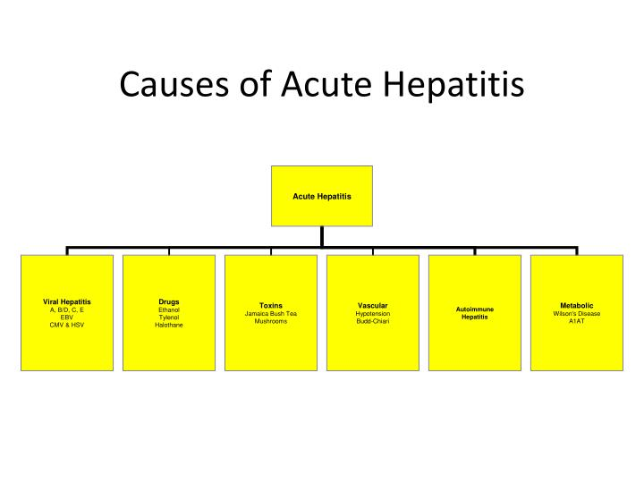 Causes of acute hepatitis
