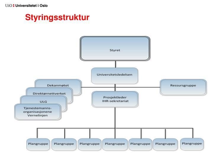 Styringsstruktur