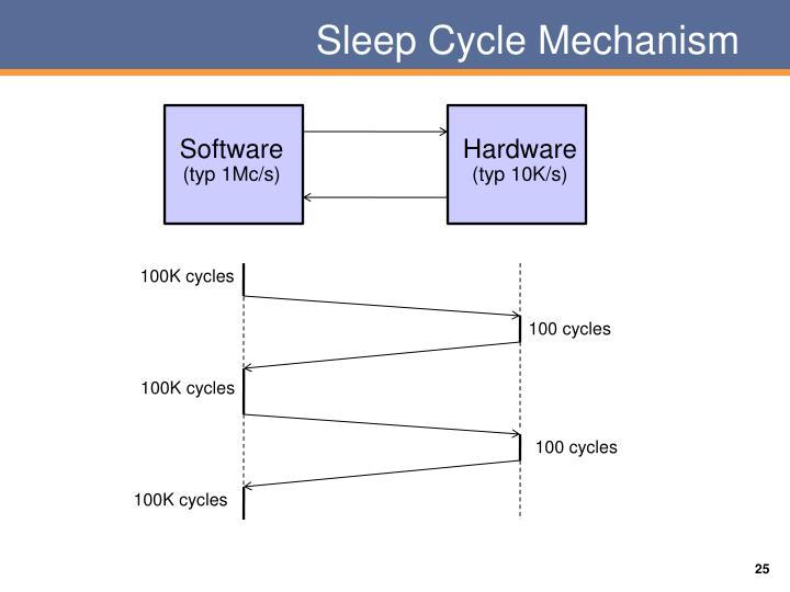 Sleep Cycle Mechanism