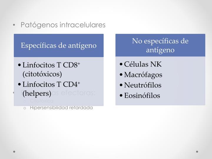 Patógenos intracelulares