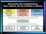 activaci n del complemento v as cl sica de las lectinas y alterna