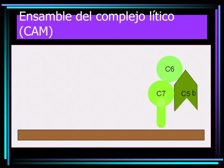 Ensamble del complejo lítico (CAM)