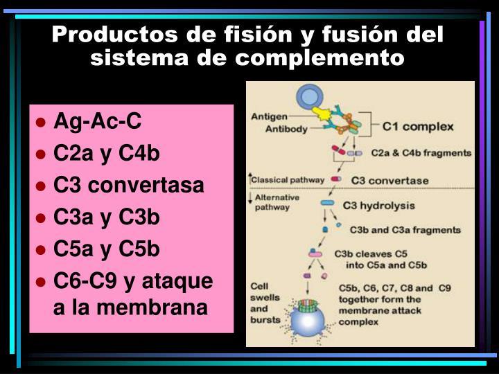 Productos de fisión y fusión del sistema de complemento