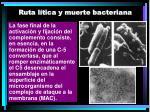 ruta l tica y muerte bacteriana