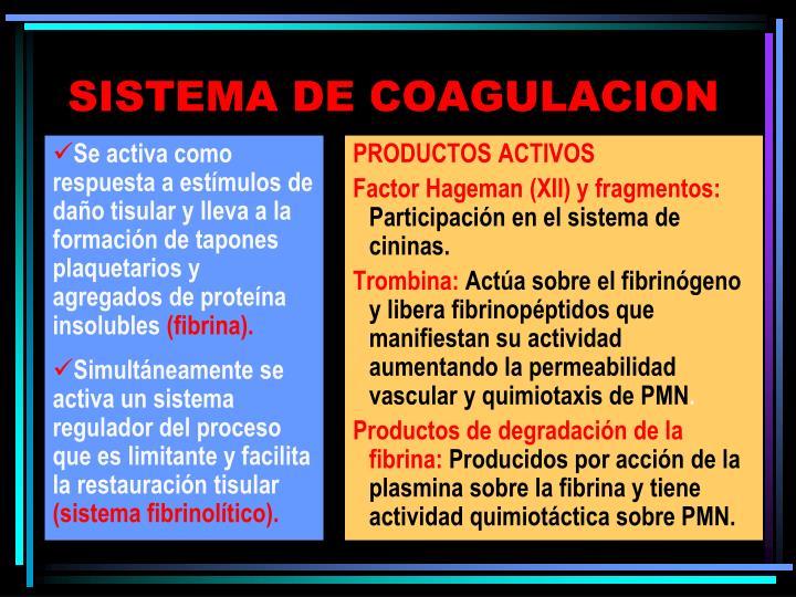 Se activa como respuesta a estímulos de daño tisular y lleva a la formación de tapones plaquetarios y agregados de proteína insolubles