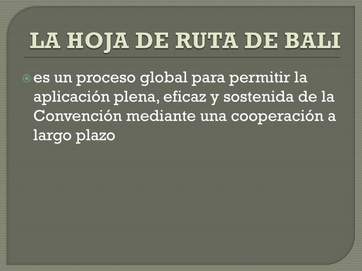 LA HOJA DE RUTA DE BALI