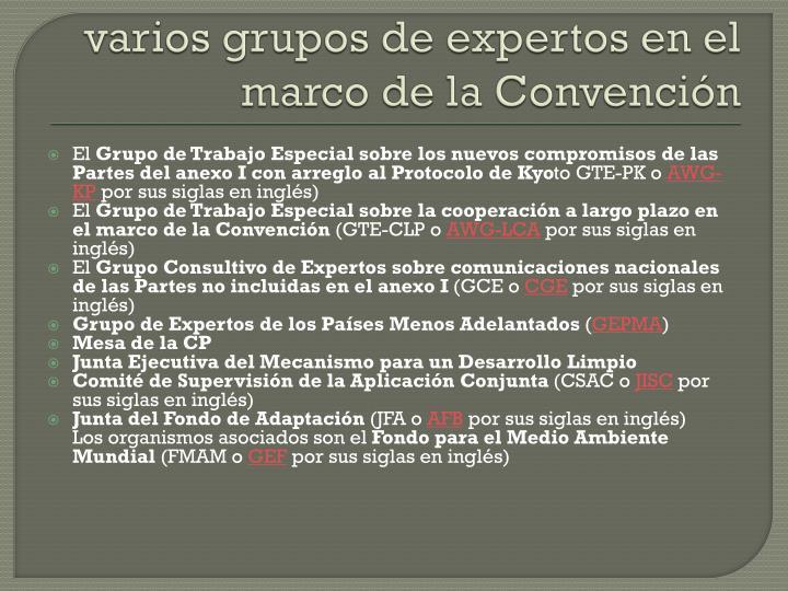 varios grupos de expertos en el marco de la Convención