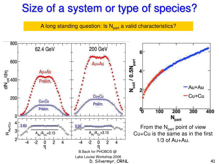 Size of a system or type of species?