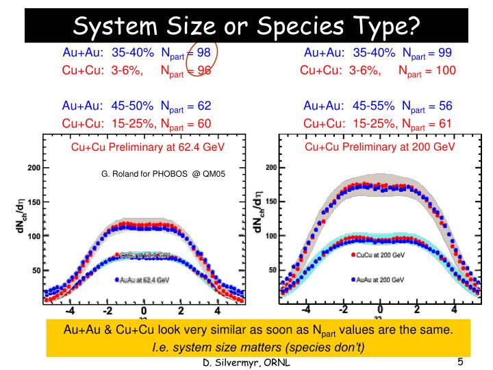 System Size or Species Type?