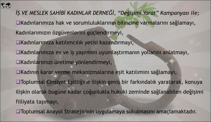 İŞ VE MESLEK SAHİBİ KADINLAR DERNEĞİ,