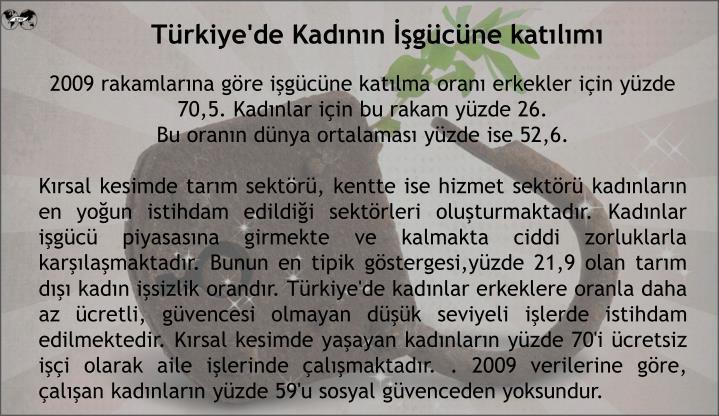 Türkiye'de Kadının İşgücüne katılımı