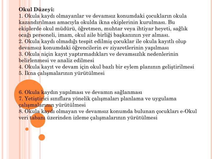 Okul Dzeyi: