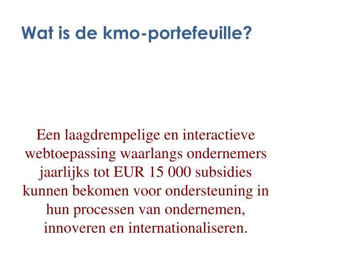 Wat is de kmo-portefeuille?