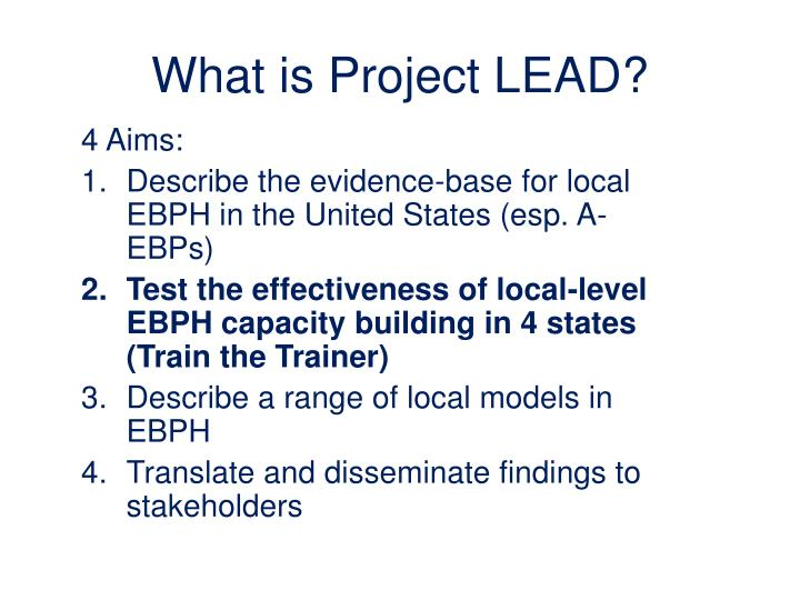 What is project lead