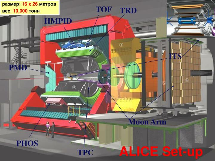 ALICE Set-up