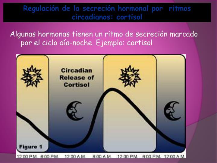 Regulación de la secreción hormonal por  ritmos circadianos: cortisol