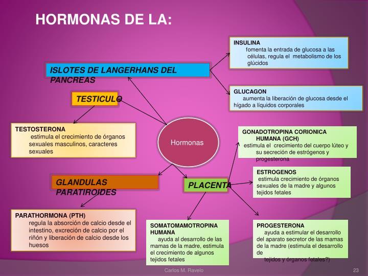 HORMONAS DE LA: