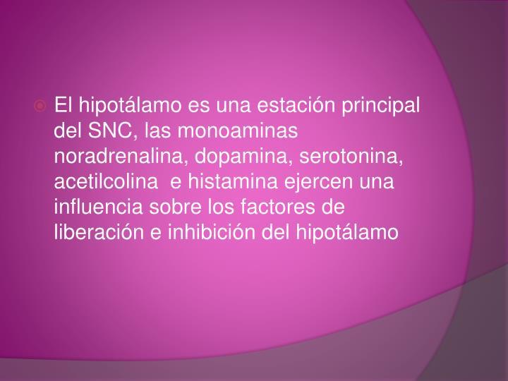 El hipotálamo es una estación principal del SNC, las