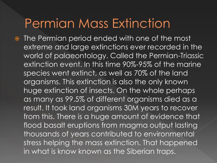 Permian Mass Extinction