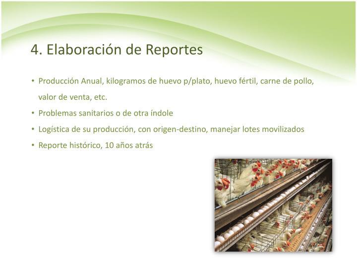 4. Elaboración de Reportes