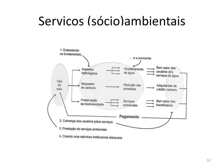 Serviços (sócio)ambientais