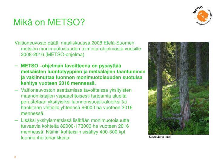 Mikä on METSO?