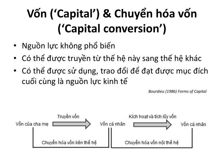Vốn ('Capital') & Chuyển hóa vốn ('Capital conversion')