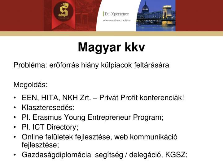 Magyar kkv