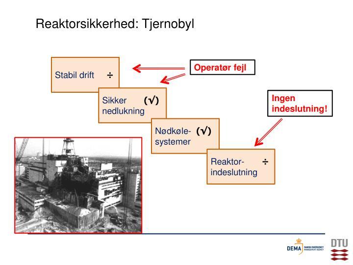 Reaktorsikkerhed