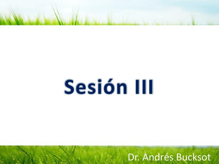 Sesión III
