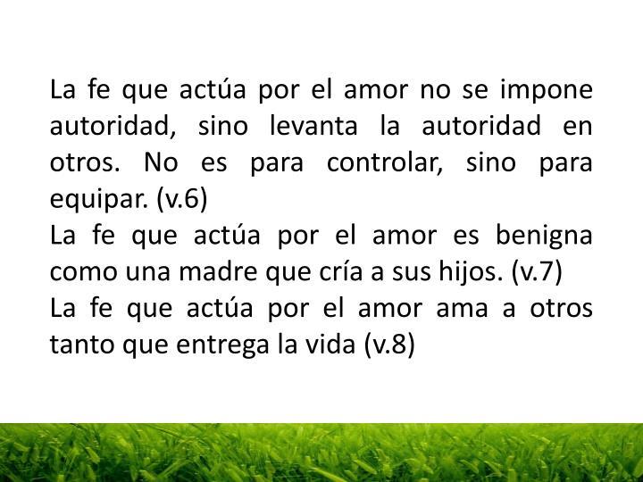 La fe que actúa por el amor no se impone autoridad, sino levanta la autoridad en